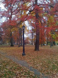 Wick Park looking north in fall