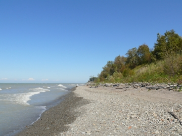 The Western Reserve Land Conservancy preserved 5,522 acres in 2012, including shoreline along Lake Erie Bluffs Park. Electronic image courtesy of the Western Reserve Land Conservancy.